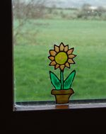 window colour picture of a flower in a pot