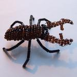bead stag beetle